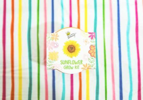 Favorite Things Spring Box Sunflower Grow Kit