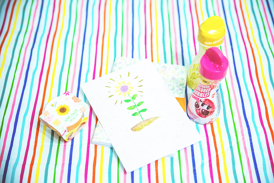 Favorite Things Spring Box tablecloth bubbles journal and sunflower kit